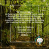 Listen to Nature Sounds and Reduce Stress